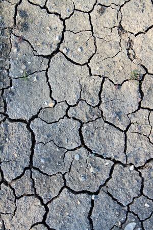 Dry ground for lack rain, photo