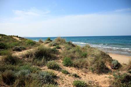 Coast of Sancti Petri Stock Photo