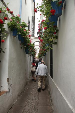 Street of flowers, Crdoba Stock Photo