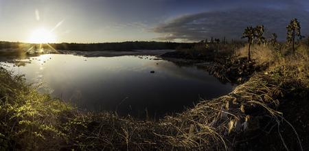 galapagos: galapagos salt lake