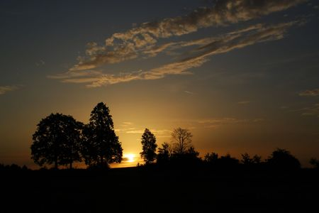 romantic sunset in europe with silouete of trees and dark sky