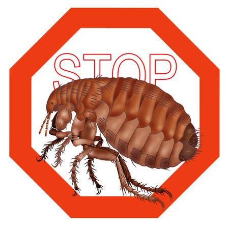 flea: stop flea, stop insect