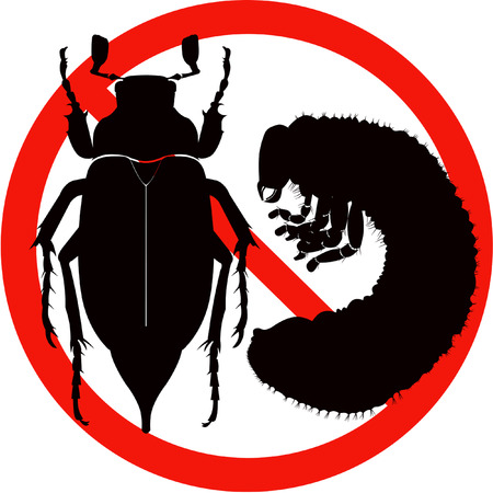 coleoptera: dangerous insect road sign black silhouette