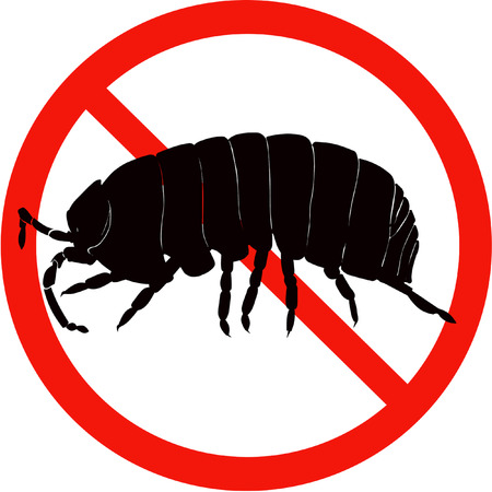 vulgare: dangerous insect road sign black silhouette