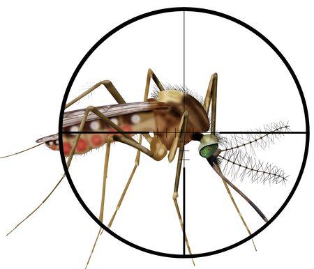 kill: kill insect, gun,target,