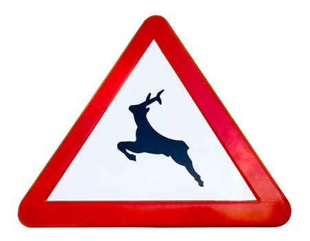 Traffic sign warns that wild animals can cross the road photo