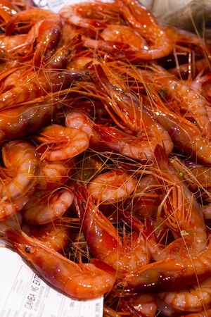 atilde: Famous Palamós Prawn in Palamós market - Catalonia  Spain  Stock Photo