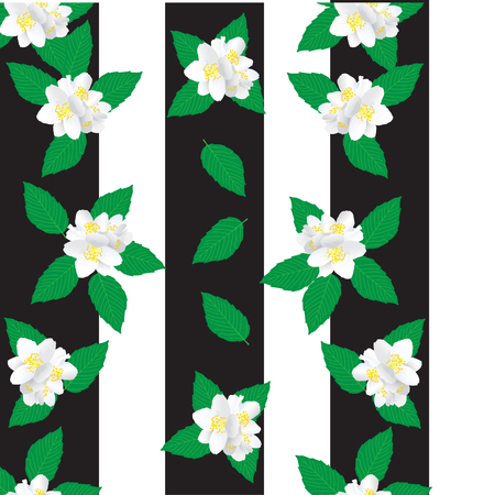 This is an amazing white jasmine flower with green leaves. A white background with black stripes. This is a seamless pattern. Can be used for tissues. Çizim