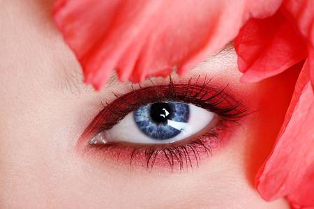 Macro shot of blue womans eye, selective focus