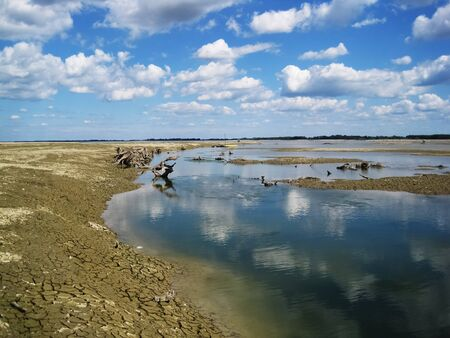 Drained hydro-accumulation lake of drava at the city Prelog with old rotten roots Stock Photo