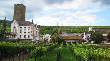 Medieval house and the fortress behind it in the middle of the green vineyard in Rudesheim at cloudy day