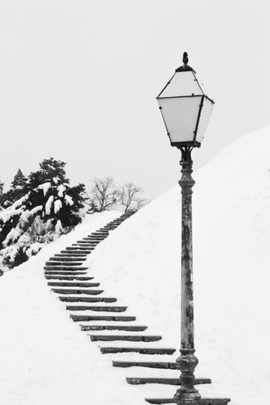 An artistic black and white picture with black stairs and a lamp on the white snow trees hill 免版税图像