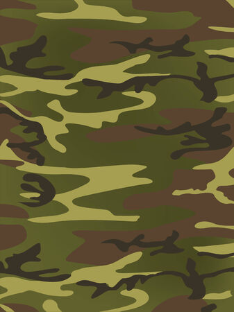 Military texture  Vector