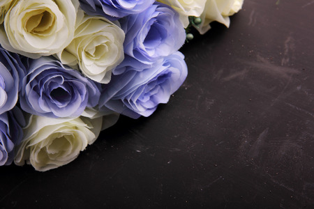 White and purple roses on top of black board surface in diagonal composition for copy space