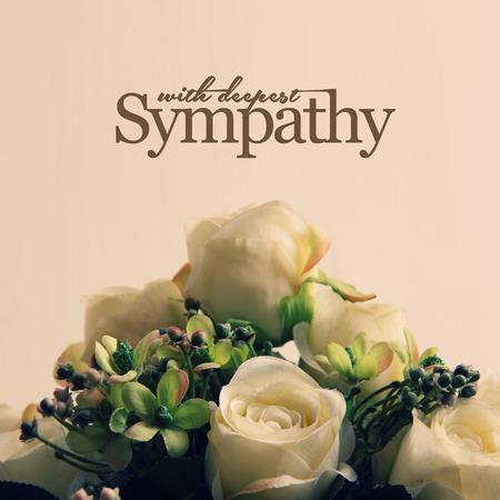 Met Diepste Sympathie, witte rozen arrangement voor sympathieke kaart of brief ontwerp Stockfoto