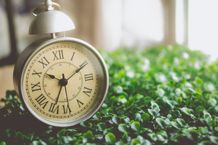 Vintage Alarm Clock with Roman Numeral on The Grass and Copy Space for Advertise about the Time or Nostalgia Concept
