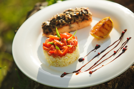 tuna fillet: Rice with salmon on a white plate on a background of nature