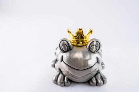 principe rana: Valentine rana pr�ncipe feliz de espera para la princesa.