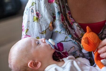 Shallow depth of field of Infant boy child with a pacifier, lies in his mothers arms with a orange knitted stuffed toy cat. Profile view.