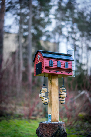 Selectiv focus of red bird feeder house barn with tallow balls. Winter outdoors. Stock Photo