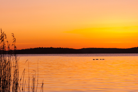 Beautiful orange winter sunset over water and land with birds on a lake and reed in the foreground. Stock Photo - 94672769