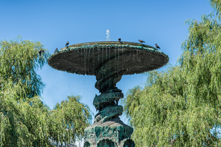 A large bronze fountain monument with birds on top and surrounding trees in a city park in Stockholm Sweden.