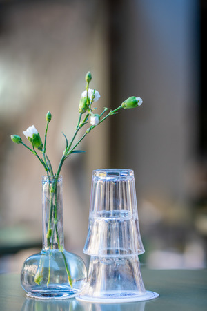 Drinking glasses and a green flower on a outdoor table. Still life with shallow depth of field. Stock Photo