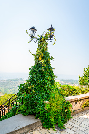 Vintage lamp post with two lanterns covered with thick green ivi creeper plant. Scenic landscape view in the background.
