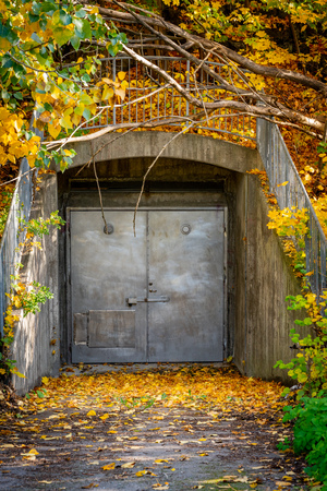 Old closed grungy steel door underground entrance outdoors covered with colorful autumn leafs. Stock Photo