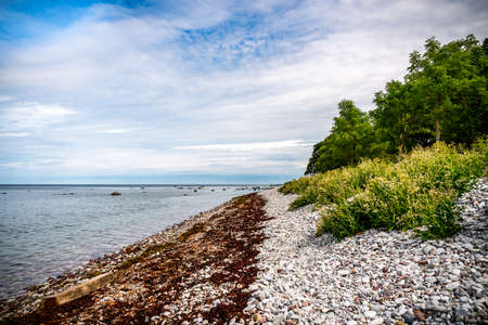 Beautiful summer view of a pebble stone beach with water horizon and sky on the island Gotland in the Baltic Sea.