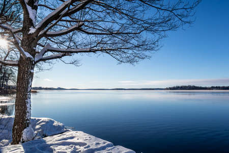 Beautiful calm and tranquil winter landscape scene with snowy tree and lake with blue sky horizon.