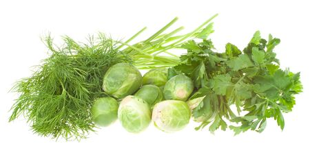 potherb: dill, parsley and brussels sprouts, isolated on white