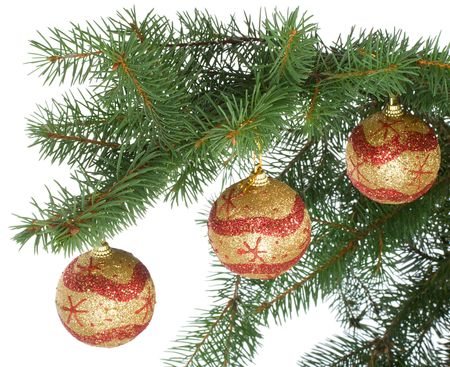 christmas balls on fir branch, isolated over while background photo