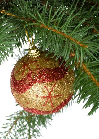 christmas ball in a fir tree, isolated over while background photo