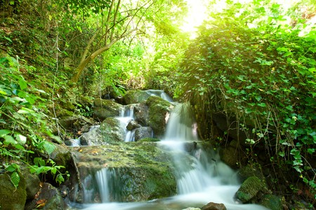 beautiful waterfall on small forest stream photo