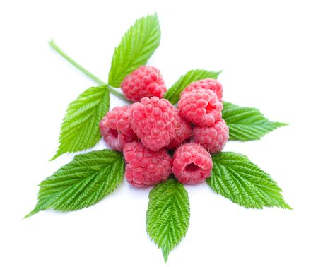 heap of ripe raspberries with leaves, isolated on white photo