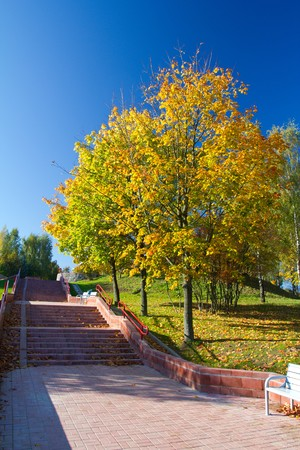 stairs in autumn park photo