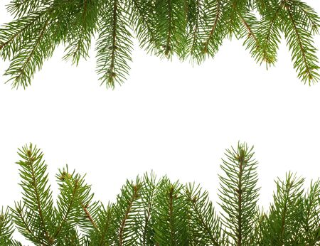 boughs: frame from firtree branches, isolated on white