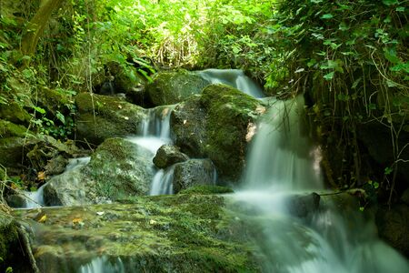 brooks: beautiful waterfall on small forest stream