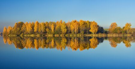 autumn trees with reflection in water, panorama  photo