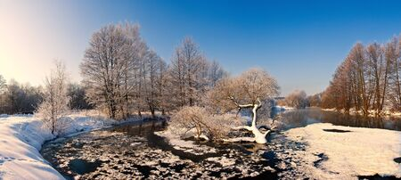 trees with frost on winter river Stock Photo - 15704609