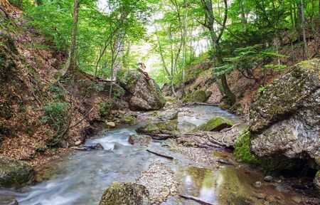 picturesque mountain river in forest Stock Photo