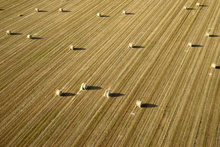 tranquil scene on urban scene: Aerial farmland view