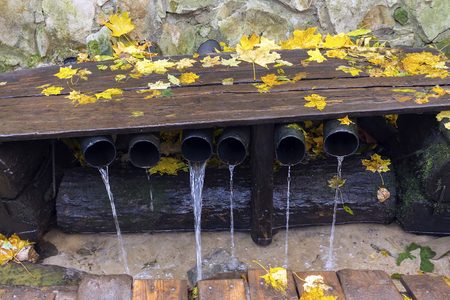 natural wellspring, autumn season