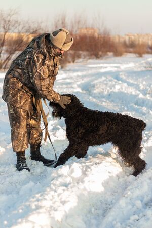 black riesenschnauzer dog with his master on a walk on winter snowy day