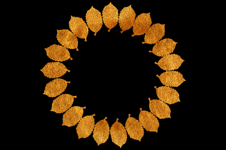 Golden leaf wreath on black. Circular leaf wreaths for your text. Leaf frame. Stock Photo
