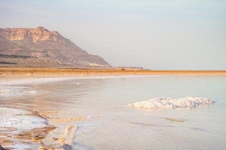Costa salgado do Mar Morto, Israel. Foto de archivo - 93552495