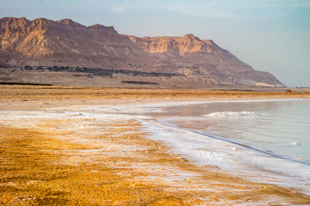 Salty coast of the Dead Sea, Israel. Foto de archivo - 95541210
