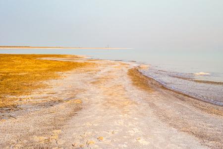 Salty coast of the Dead Sea, Israel. Foto de archivo - 98918330