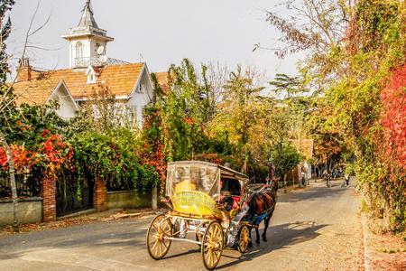 Buyukada Island street view, one of the Princes Islands on Marmara Sea.
